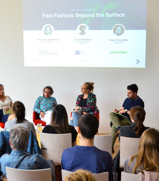 Fast Fashion: Beyond the Surface